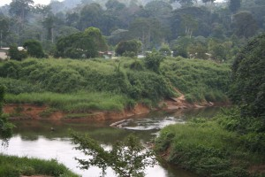photos-barbaut-congo0031