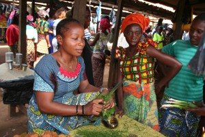 photos-barbaut-congo0039